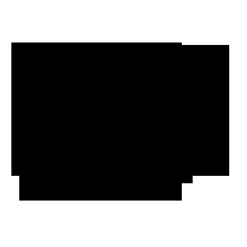 Taxonomy image